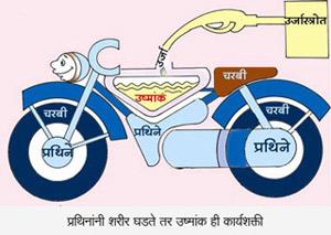 Bike Food Grains Digram
